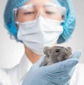 鼠疫是什么?���如何防治?