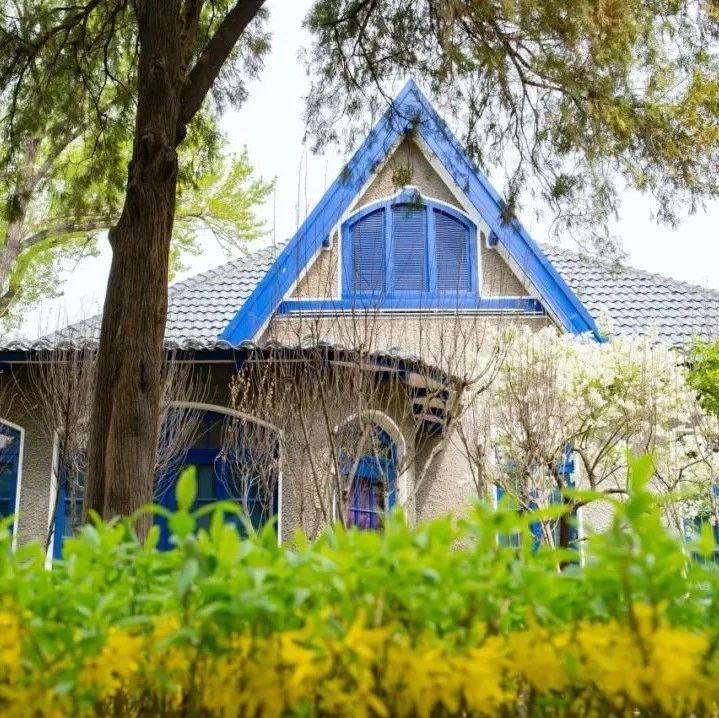 【淄博在线】春天最美!淄博也有座与北京重名的西山公园