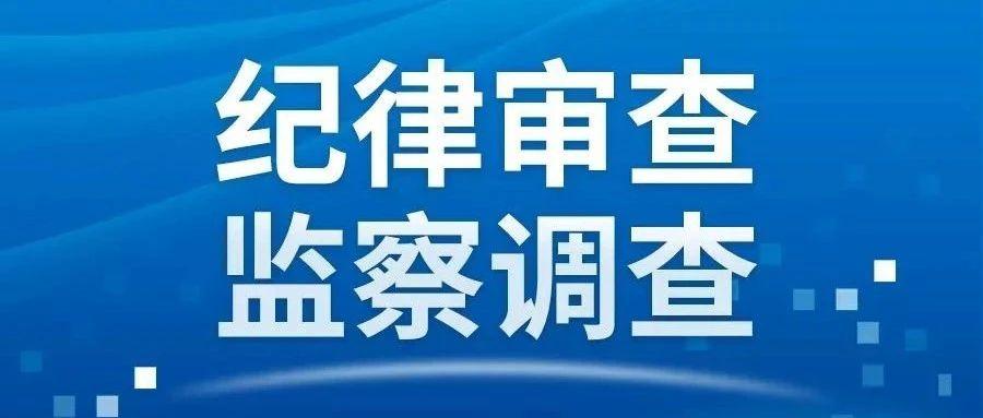 府谷县人民检察院党组成员、副检察长、四级高级检察官王新利接受审查调查