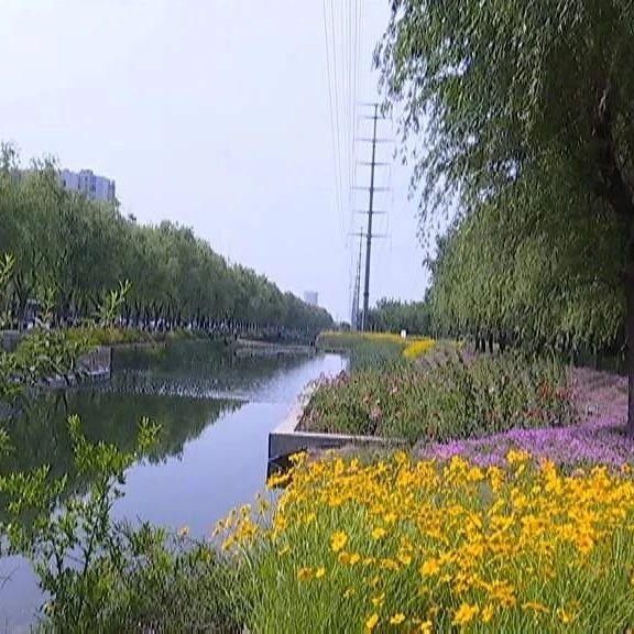 大写的美!饮马河畔风景如画,但是......