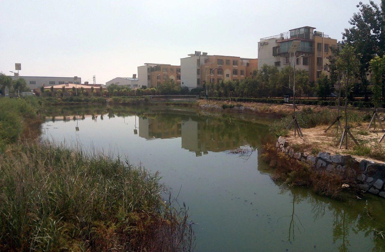 寻找钻井新村湖水异味