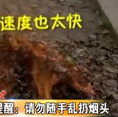 警钟:一个烟头儿引起的火灾……