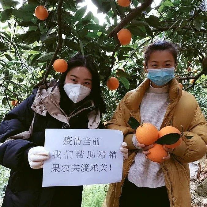 奉�10�f斤�橙�N售助消�M扶�