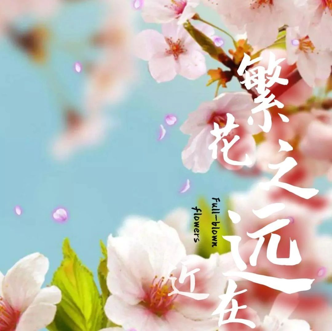 奉�,��具春天的美