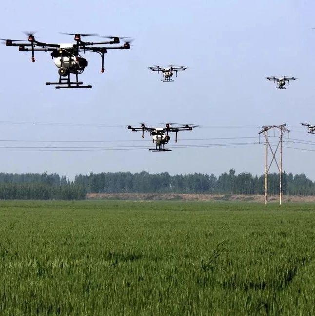 邹城这个镇用20多架无人机?#40644;?#25746;农药!场面壮观