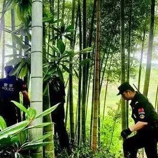 湖北一歹徒驾车冲卡民警鸣枪追捕,最终在山林里落网了!