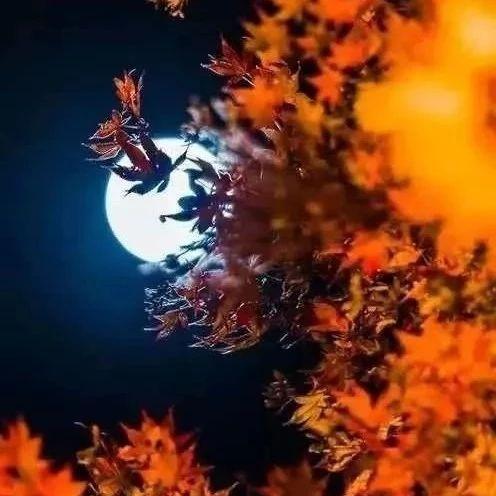 一种遥远,一种藏在心里的:德令哈的月光