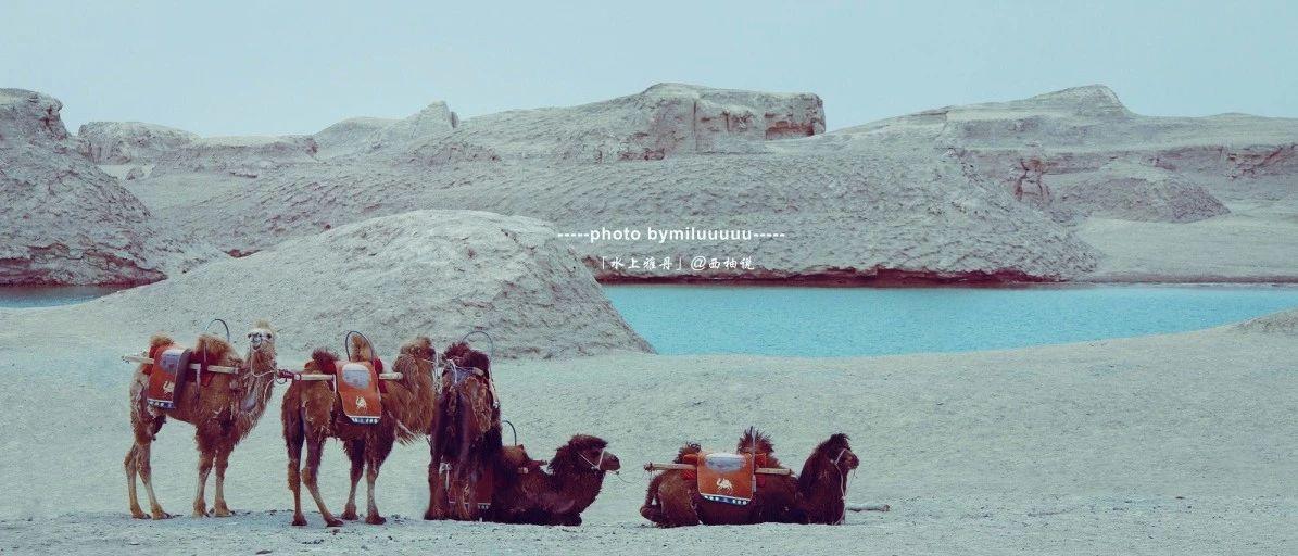 水上雅丹|大西北的千�u湖,似礁似�u,比肩水中。