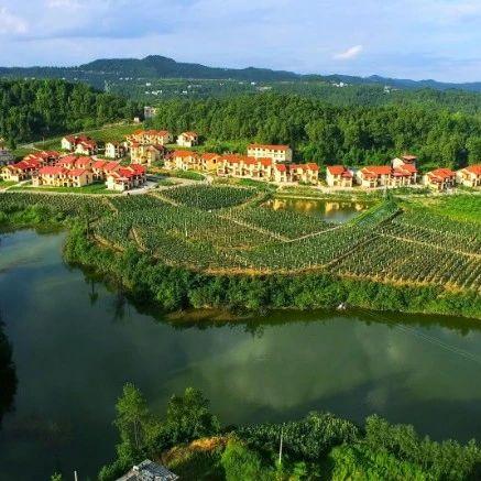 激动!三年后,四川农村人居环境将大大改善!