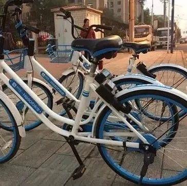 共享单车在漯河设禁停区!这几个地方不要停!
