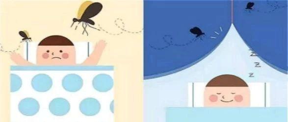 春末夏至又见蚊虫骚扰怎么办?