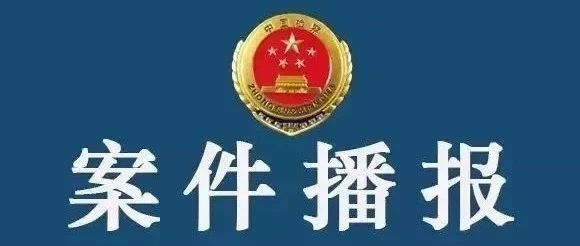 【扫黑除恶】金寨一涉恶犯罪案件被检察机关提起公诉