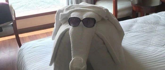 【冷兔趣�】酒店的一些有趣�O�