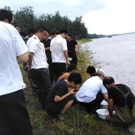 望江县向长江增殖放流1000万尾鱼苗