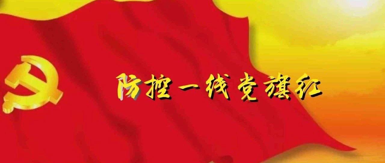 """【防控一线党旗红】系列综述之一:人民战""""疫""""中的红色力量"""