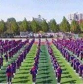 新郑这所学校喜提省级荣誉……