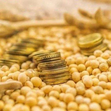 """个别大豆贸易商""""打白条""""拖欠农民卖粮款"""