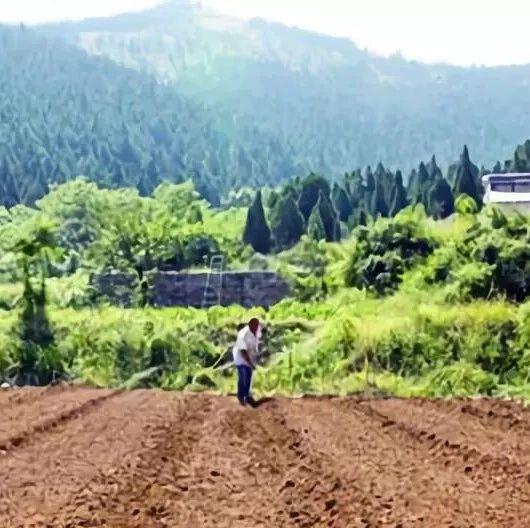 """2019年农村将实施最新的土地政策,""""2大变化""""""""2件事"""""""