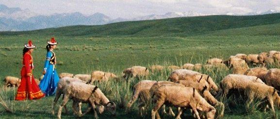 �C南,一��偏和羊�^不去的地方