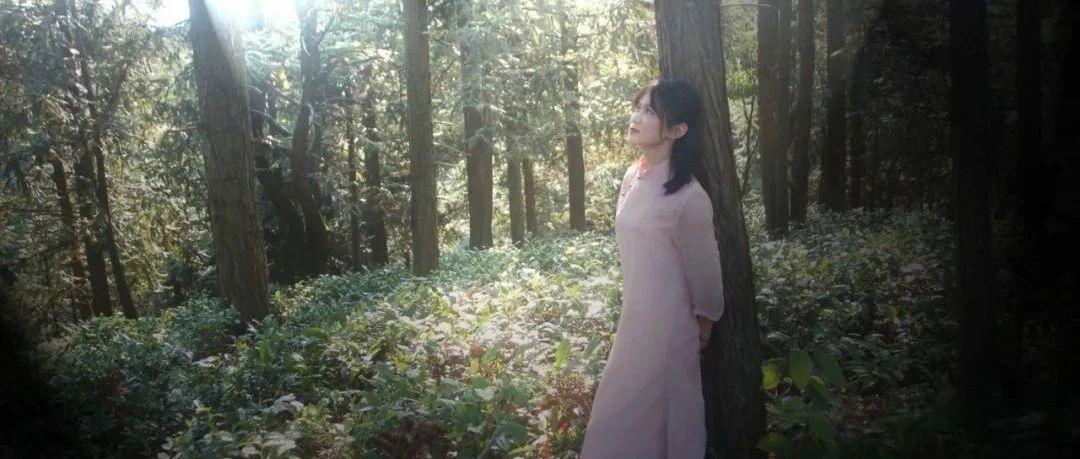 美女茶�����你逛茶�@|在太平山,用一�夭栳j�春天里的�b骨柔情