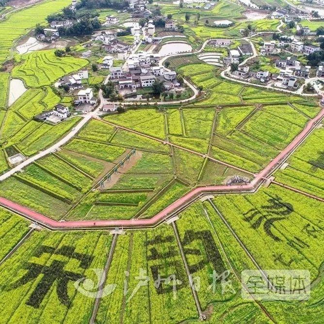 泸县这些地方上榜!四川省首批乡村治理示范村镇,有你家乡吗?
