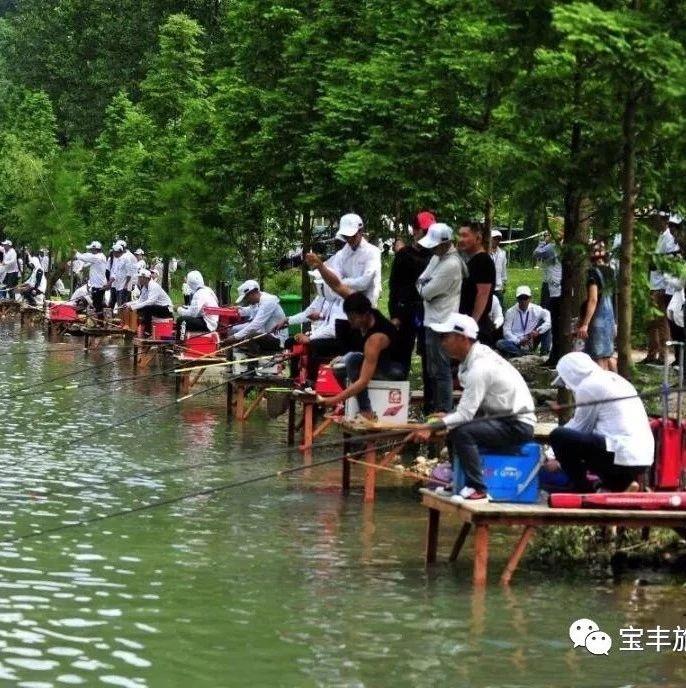 邀请函|印象宝丰首届端午文化节钓鱼大赛等你来战!