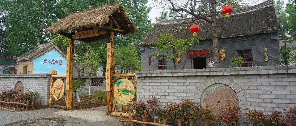 【乡村游】闹店镇西杨庄,森林深处美名扬