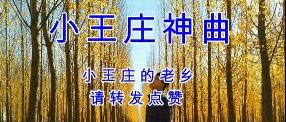 小王庄镇小伙为家乡拍的视频唱的歌火了!都在传!