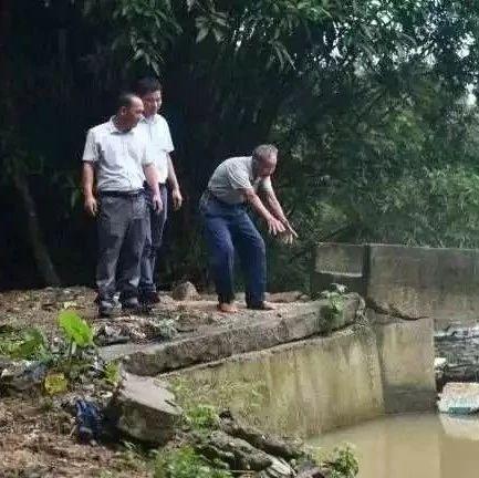 81岁老人只身跳下4米深河救人:这是人命,我怎么都要救