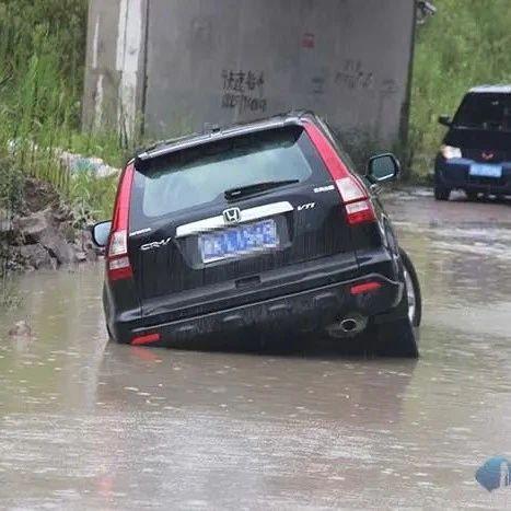 """被""""坑""""了!缙云小车掉入路边深水坑…"""