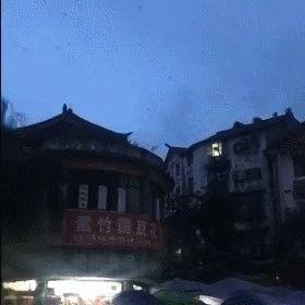 宜�e�L��燕子成群�w舞?四川省地震局�{查�Y果�砹�