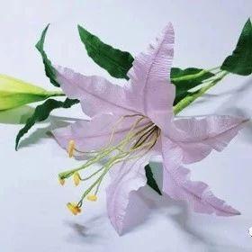 纸做的百合花,别看这么逼真,其实做法很简单!