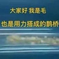 """女孩乘地�F羽�q服""""炸""""了!羽�q服�@�哟┎鸥�安全,沅陵人要注意!"""