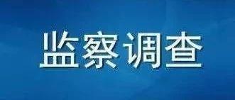 【涉嫌严重违法】东营又一名村党支部书记、主任被调查