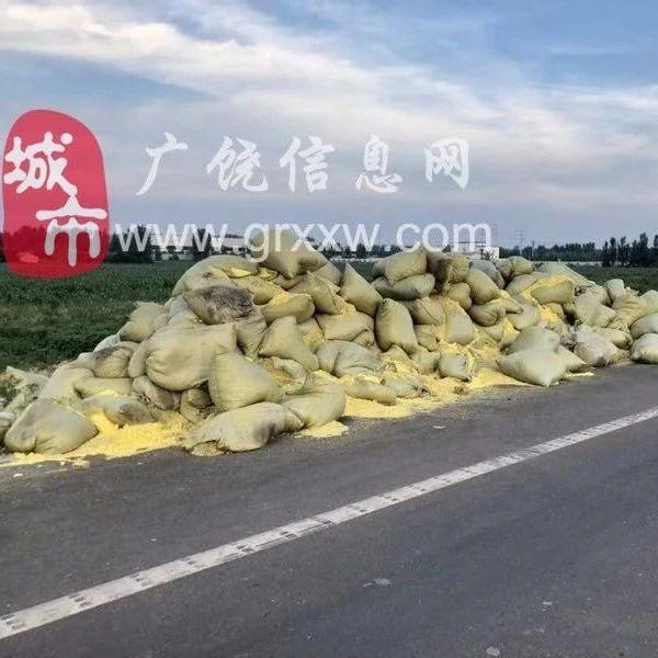 【网友爆料】广饶某工厂附近一夜之间多出一堆不明物体..