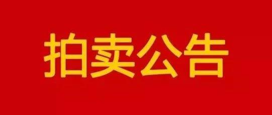 最新!公�哲�拍�u公告!�e克、江淮、帕�_特...