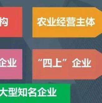 """2018年我县新增""""四上""""企业119家,创近年新高"""