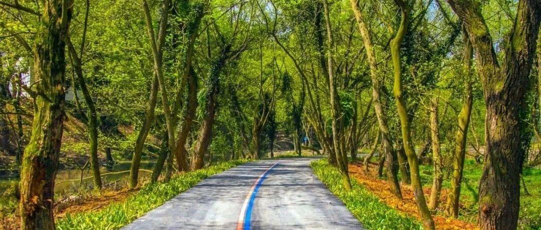 我市绿道里程居全省第一