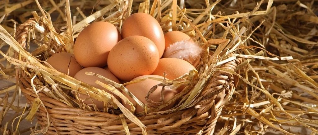 """央视曝光造假土鸡蛋!竟是添加剂""""化妆""""出来的,超市仍然有售……"""