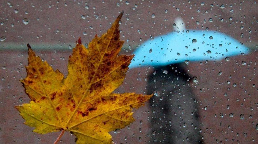 冷空气来袭,嘉祥下周秋雨连绵气温跳水!