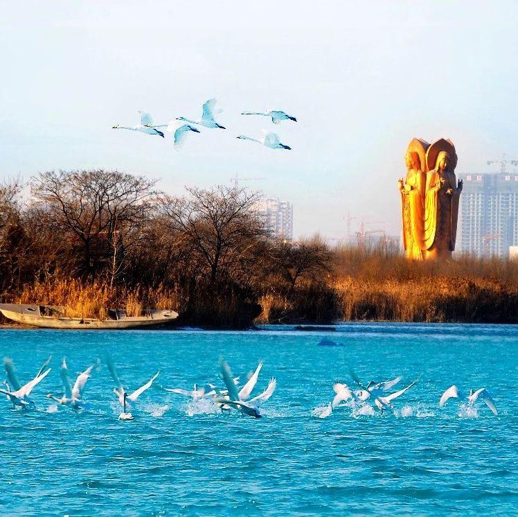 济宁太白湖的相关项目收费标准公示,想去玩的嘉祥人看看