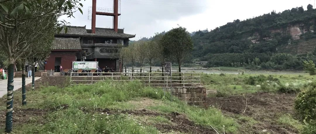 群众反映夹江毛坝生态问题:部分属实,正全力整改!