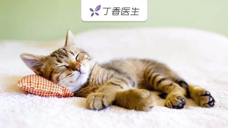 枕头用错了伤颈椎,你可能一直没枕对