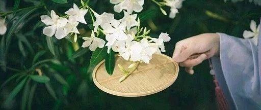 100首夏日诗词,带你清凉一夏!