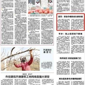 邢台日报丨清河:农技巾帼突击队解农困