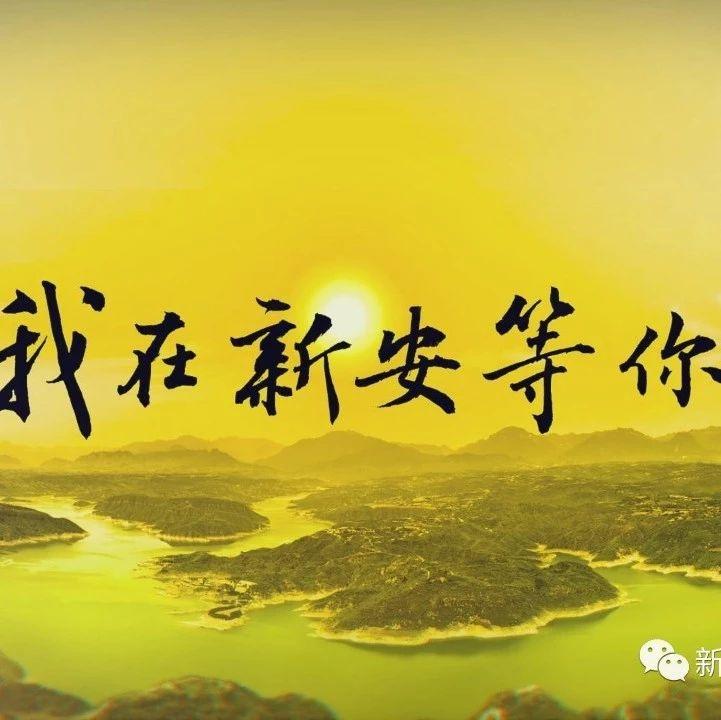《我在新安等你》宣传片出炉!!