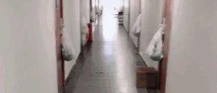 每家门上都挂一只西瓜,邻居忍不住拍照发上网!真相曝光后...