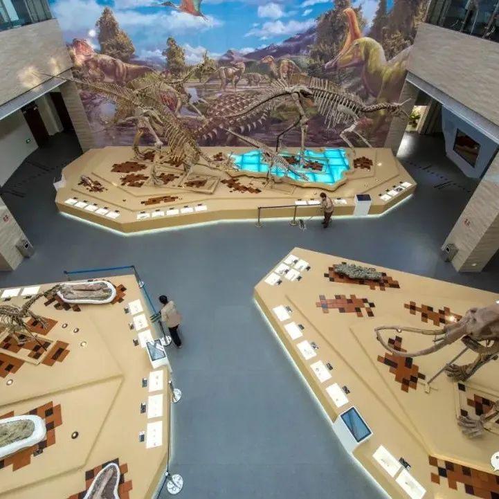 莱阳:新中国第一具完整的恐龙化石发掘地