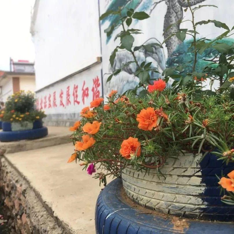 内外兼修,莱阳市谭格庄镇绘就美丽乡村新画卷