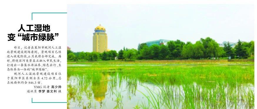 """烟台日报莱阳市人工湿地变""""城市绿脉"""""""